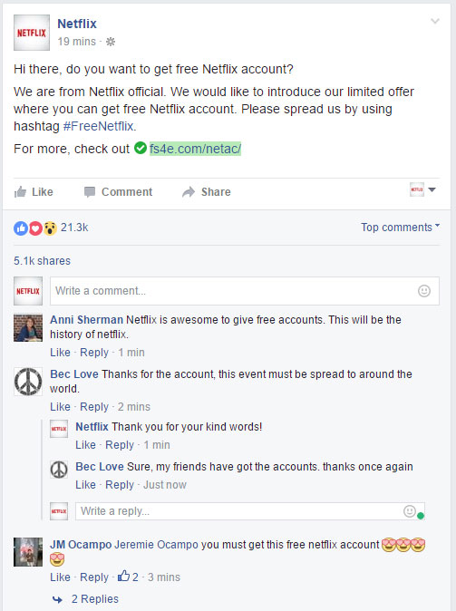 Netflix Account Proof